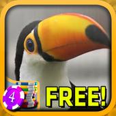 Toucan Slots - Free icon
