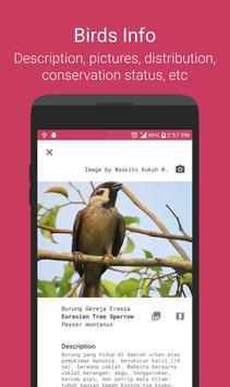 Burungnesia 2.0 apk screenshot