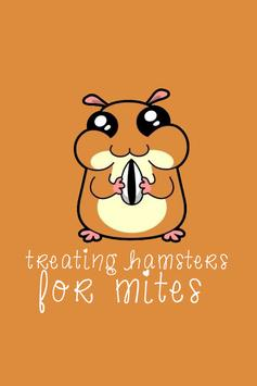 Treating Hamsters For Mites poster