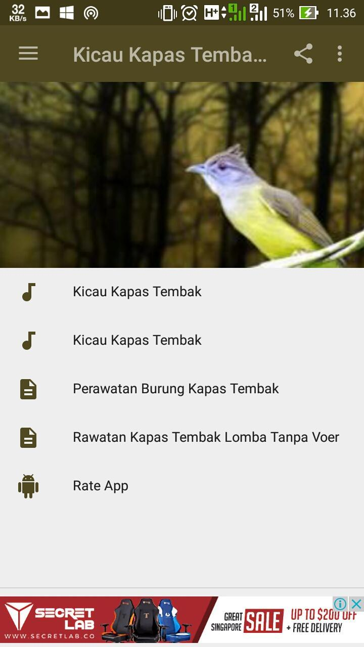 Kicau Kapas Tembak Gacor For Android Apk Download