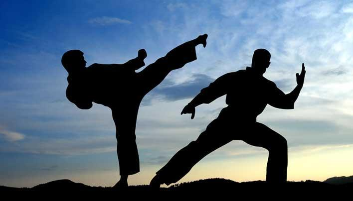Martial Arts Training cho Android - Tải về APK