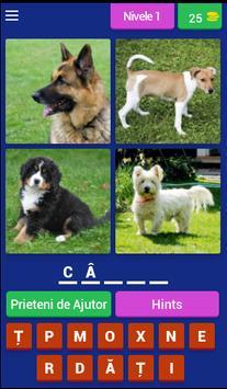 Lumea Animalelor poster