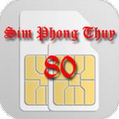 Sim Phong Thuy icon