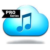 Music-Paradise+MP3 icon