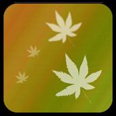 Simple LiveWallpaper Free icon