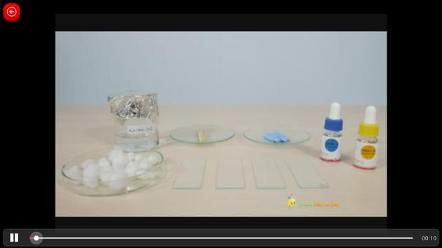 Biologi SMA : Sistem Kehidupan Vertebrata (1) screenshot 7