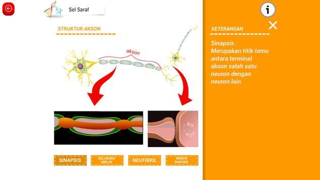 Biologi SMA : Sistem Kehidupan Vertebrata (3) apk screenshot
