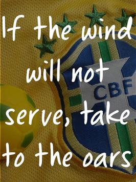 Famous World Cup Soccer Quotes apk screenshot