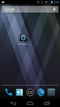 Developer Options poster
