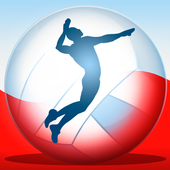 Volleyball Championship 2014 icon