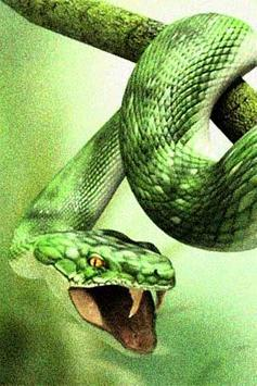How To Draw Snake Animals apk screenshot