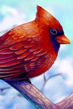 How to Draw Bird Animal apk screenshot