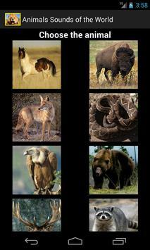 Animals Sounds of the World apk screenshot
