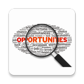 IT Business Opportunities icon