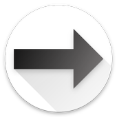 Racelink icon