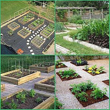 diy vegetable garden ideas apk screenshot
