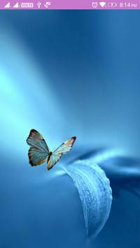 Butterfly Wallpaper poster