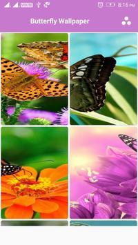 Butterfly Wallpaper screenshot 1