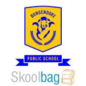 Bungendore Public School icon