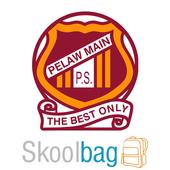 Pelaw Main Public School icon