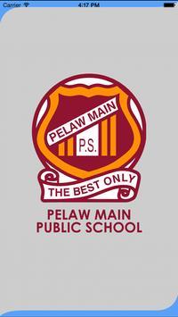 Pelaw Main Public School poster