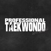 Professional Taekwondo icon