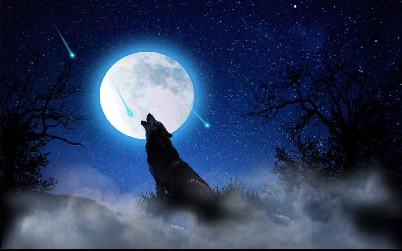 Wolf Moon Song Live Wallpaper For Android Apk Download