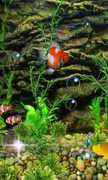 Aquarium Fish 2016 poster
