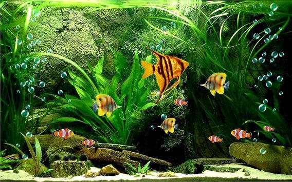 Aquarium Fish 2016 apk screenshot