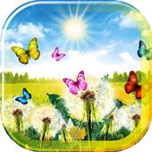 Dandelions Spring 2016 icon