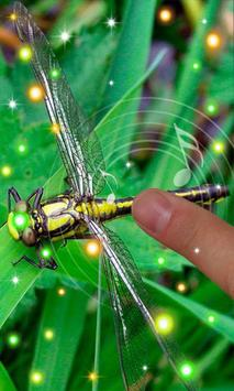 Dragonfly Best apk screenshot