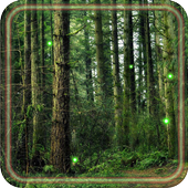 Forest Gallery LWP icon