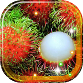 Fruits Exotic live wallpaper icon