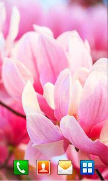 Magnolia 2016 apk screenshot
