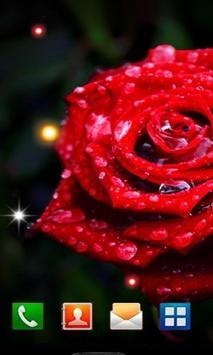 Roses Morning Dew 2016 LWP screenshot 1