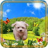Spring Puppy icon