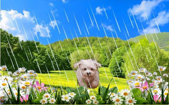 Spring Puppy apk screenshot