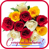 Congratulation Gif icon