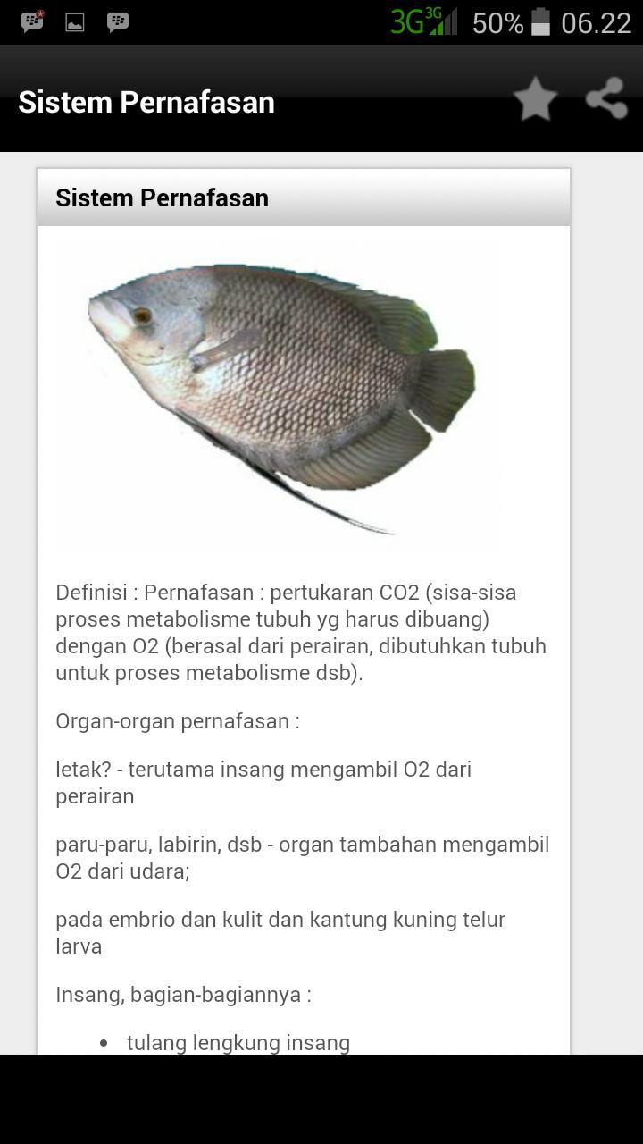 Download 64 Gambar Ikan Dan Bagiannya Terbaru