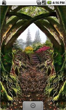 Magical Forest Live Wallpaper apk screenshot