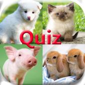 Pics Animals Quiz icon