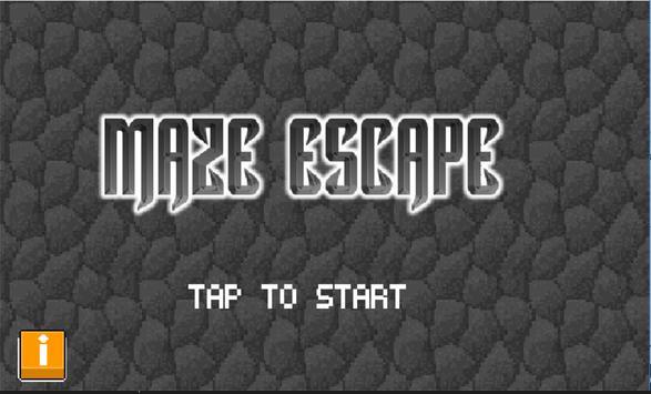 Maze Escape poster