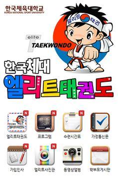 한국체대엘리트태권도 poster