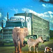 Animal Transport Duty Sim icon