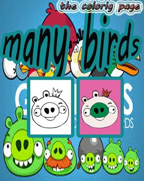 Many Angry birds The Coloring poster