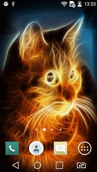 Sunny cat live wallpaper apk screenshot