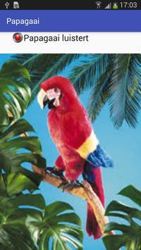 Papagaai screenshot 1