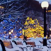 snow night city live wallpaper icon