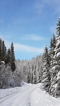 Snow Wallpaper HD apk screenshot