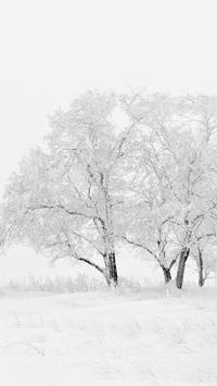 Snow Wallpaper HD poster